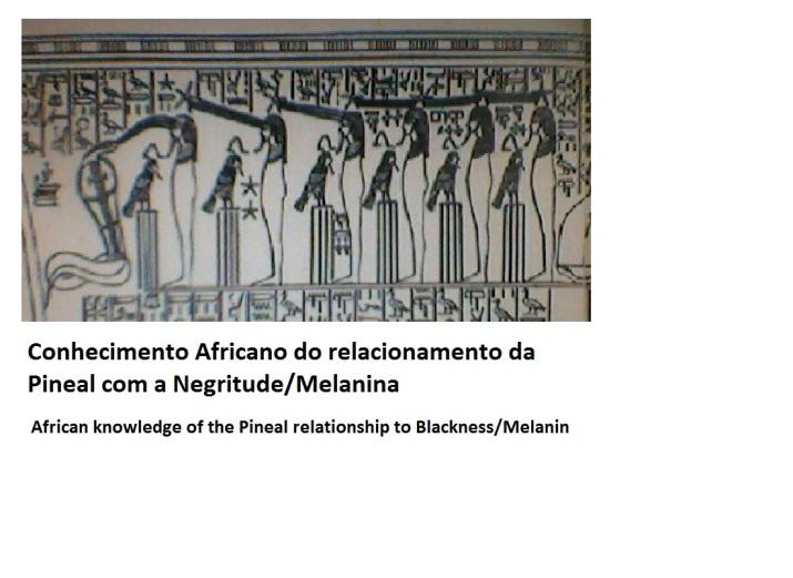 figura 7 - conhecimento Africano pineal negritude